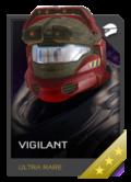 H5G REQ Helmets Vigilant Ultra Rare