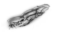 ThePackage Battlecruiser Concept.png