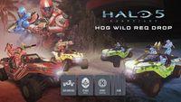 H5G-HogWild.jpg