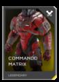 REQ Card - Armor Commando Matrix.png