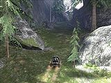 Hog in the canyon.jpg