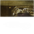 H4 AssaultRifle TBN Skin.png