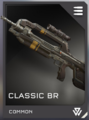 H5G-ClassicBR.png