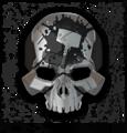 HW2 skull iron.png