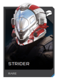 H5G REQ Helmets Strider Rare.png