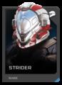 H5G REQ Helmets Strider Rare.png