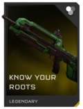 Know Your Roots battle rifle REQ image.
