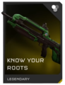 H5G - BR skin card - Know Your Roots.png