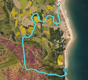 FH4 Halo Showcase Map.png