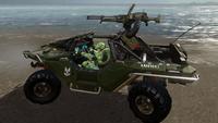 H2AMP-WarthogLRV.png