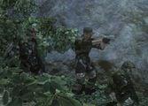 Marines in the Jungle.jpg